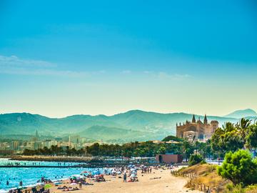 Испания. Виноградник