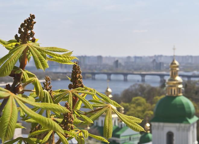 Візитівки Києва