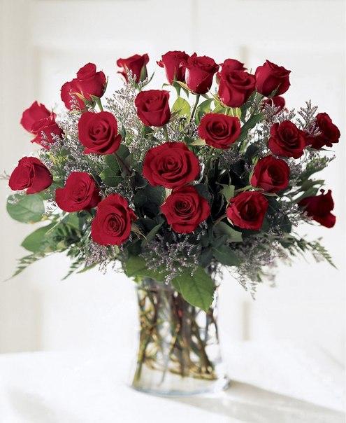 Красные розы на День Рождения