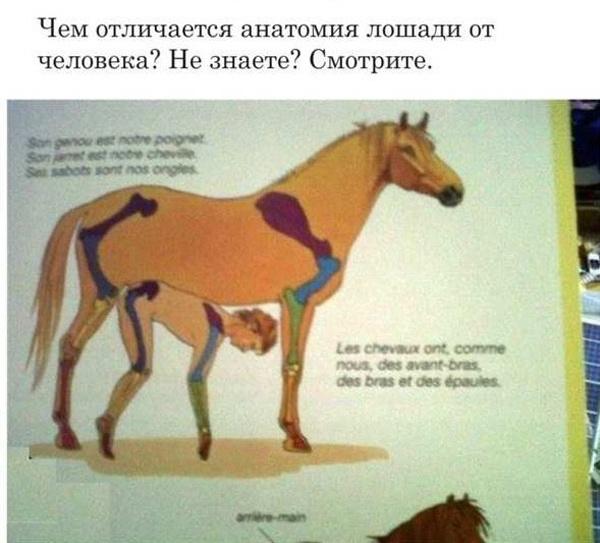 Книжки, которые нельзя показывать детям