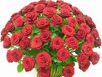 Розы на день рождение