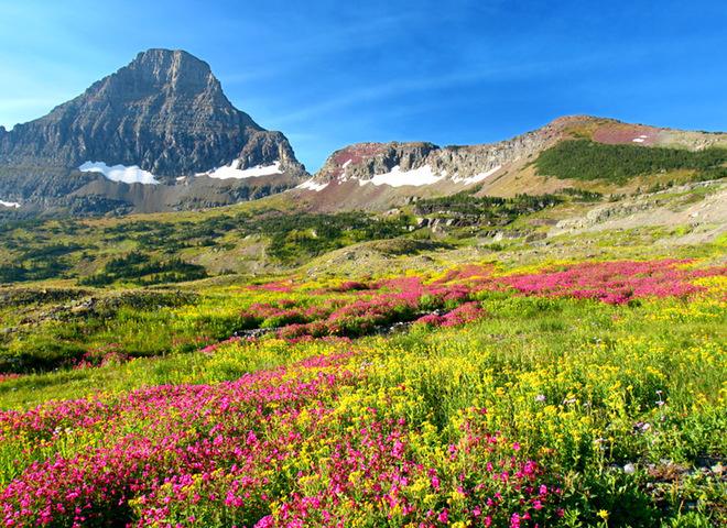 15 живописных мест, которые расцветают с приходом весны