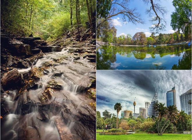 Милуємось осінніми краєвидами: 3 найкращі міські парки