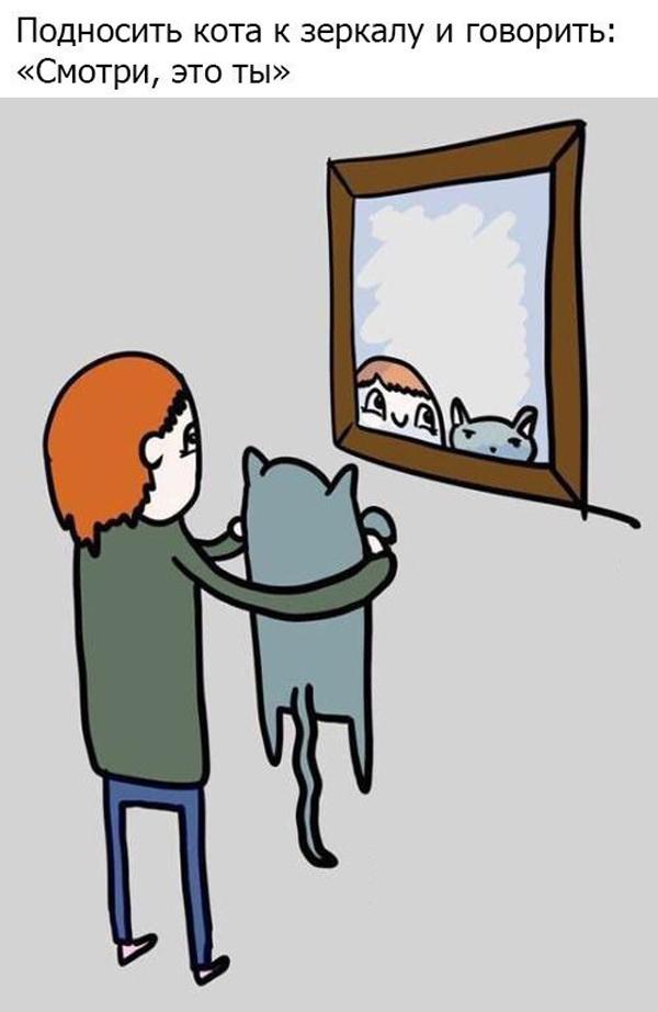 Если у вас есть кот, то...