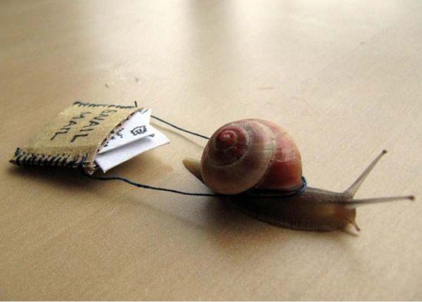 День почтовой открытки