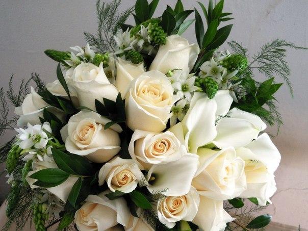 Розы картинки букеты большие