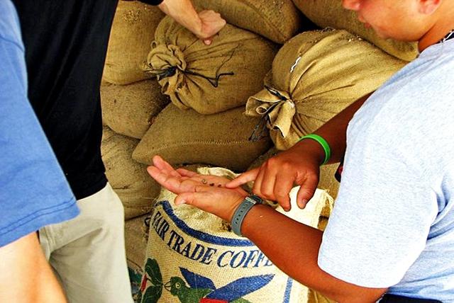Куди поїхати істинним кавоманам: Santa Maria de Dota, Коста-Ріка