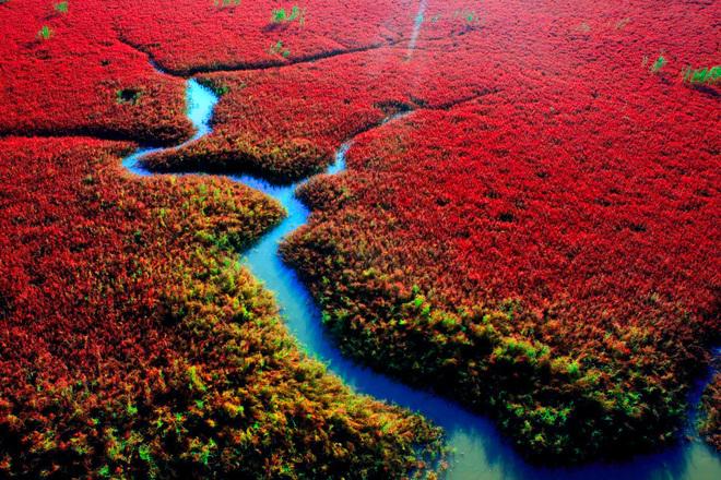 Самые красивые места в мире: Красный пляж, гордость Китая