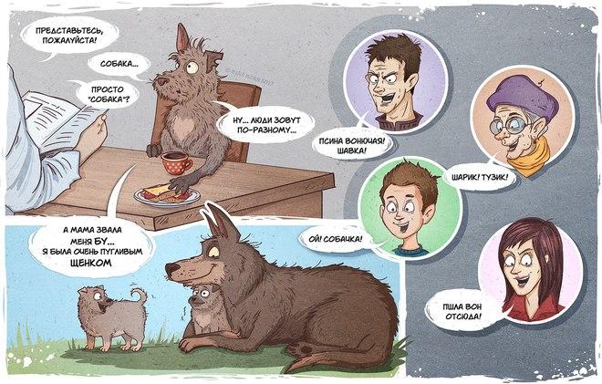 Трогательный комикс про собаку, которая жила на улице от Bird Born
