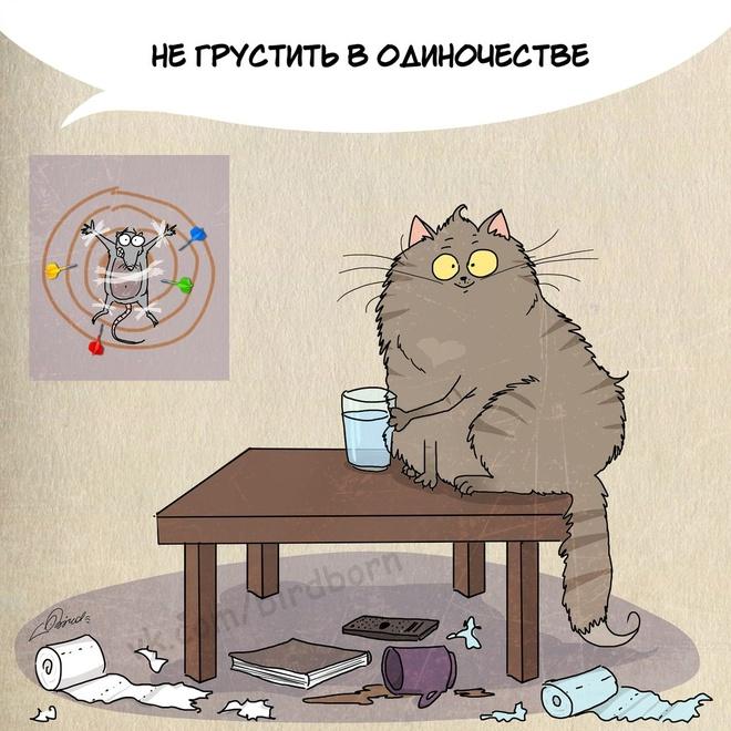 Правила жизни. Коты плохого не посоветуют