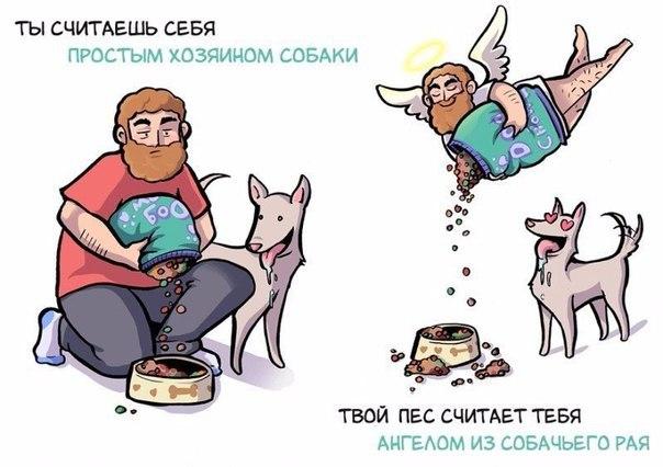 Как вы себя видите, и как вас воспринимает собака