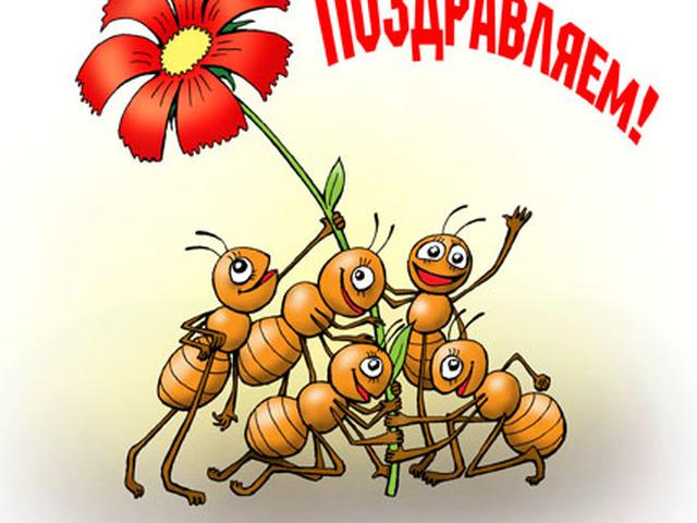 какая картинка с муравьями поздравляем страждущим было