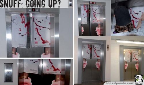 Оформления лифта
