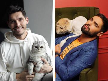 Коты украинских звезд — фотоотчет