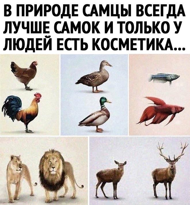 Природа и косметика