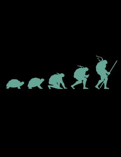 Эволюция Нинзи Черепашки
