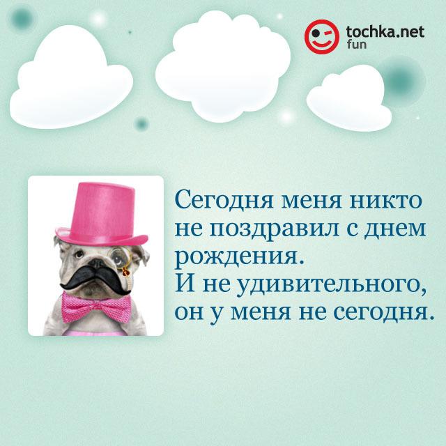 Собака-философяка про день рождения