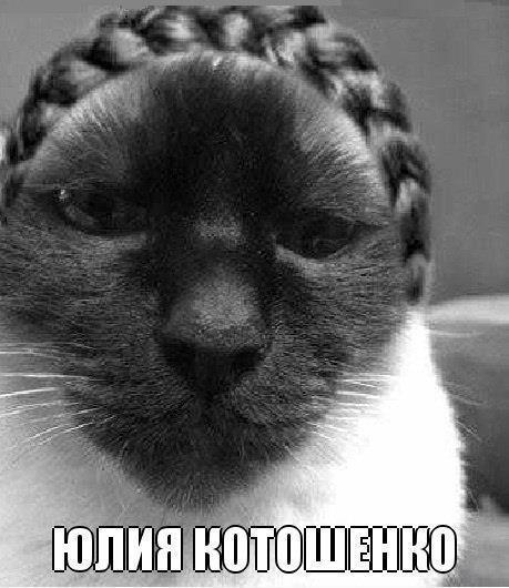 Няшка Юля Котошенко