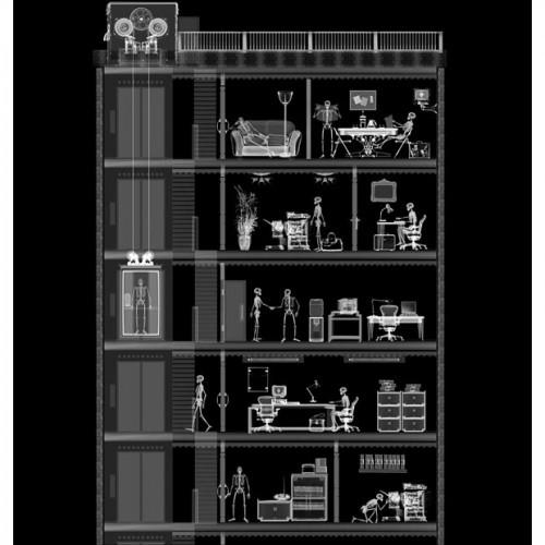 Рентгеновские снимки