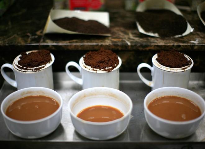 Дегустатор кави розрізняє тисячу його ароматів