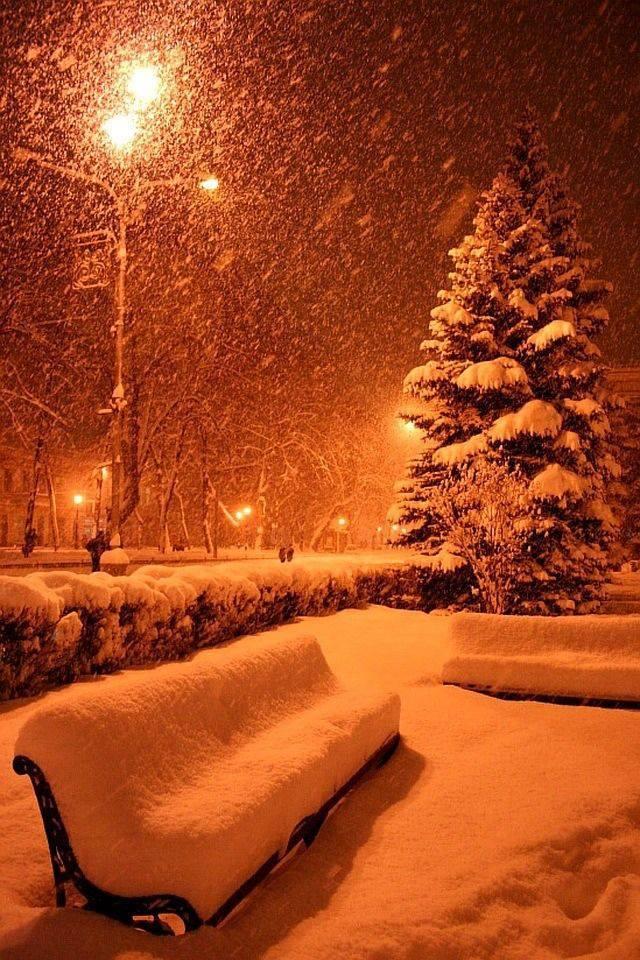 Сказочная зимушка