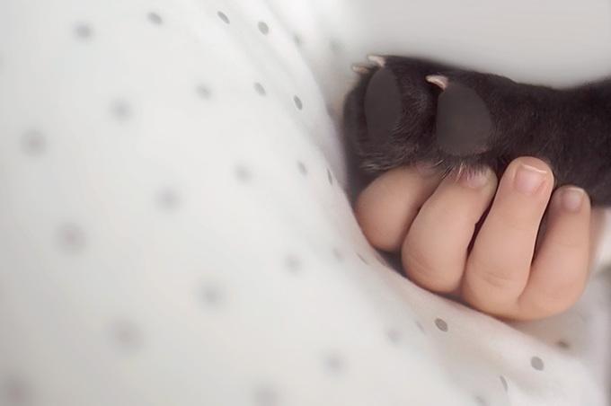 Малыш и бульдог