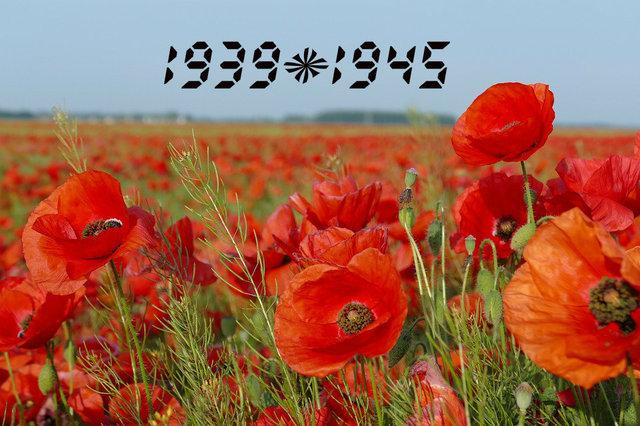 День Победы над нацизмом