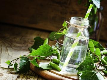 Рецепти березового соку