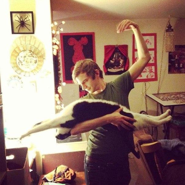 Балет в исполнении котэ
