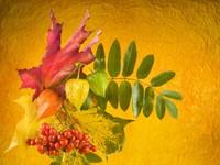 Красивая открытка с 1 сентября - первым днем осени