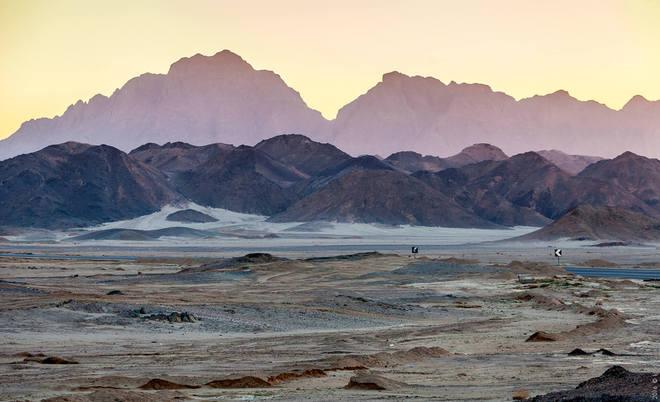 Египет, пустыня