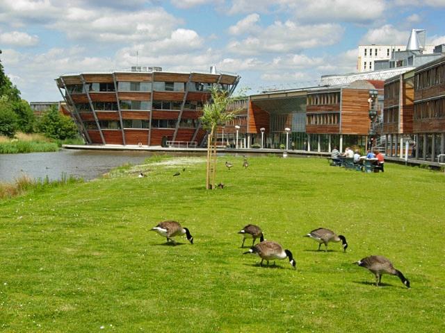 Незвичайні університети світу: Ноттінгемський університет
