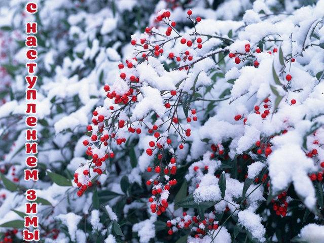 С наступлением зимы!