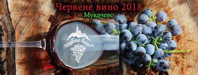 Куда поехать в январе в Украине