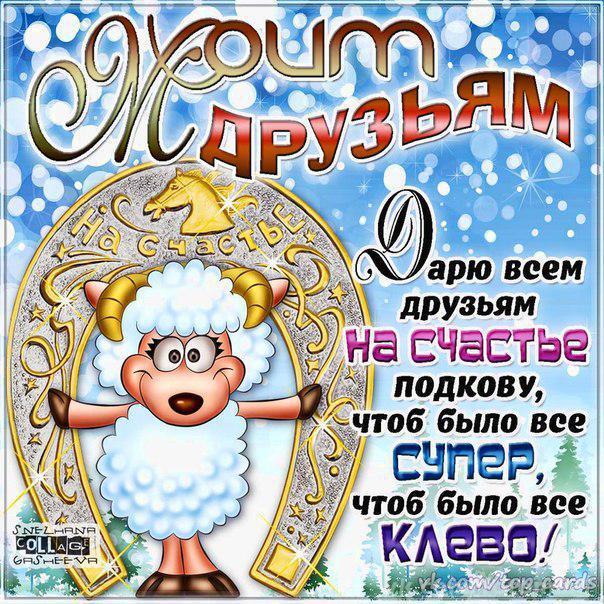 Моим друзьям на Новый год овцы 2015