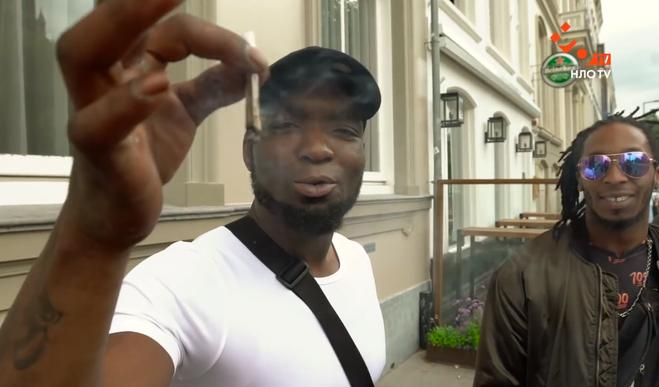 Сколько стоят и где продаются сигареты с марихуаной в Роттердаме