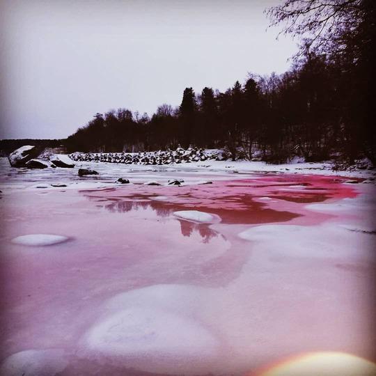 Эстония красная вода