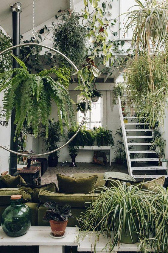 Міні-сад в кварті