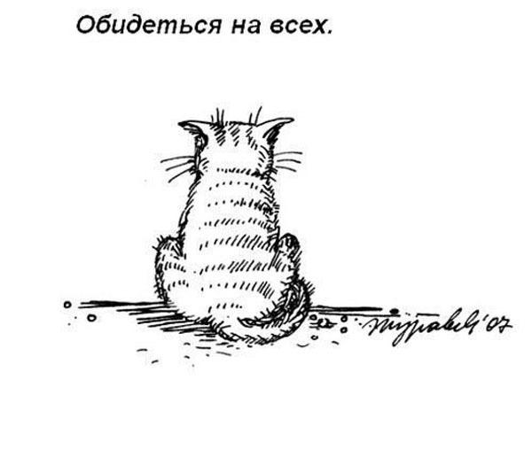 Любимые занятия котэ. Прикол