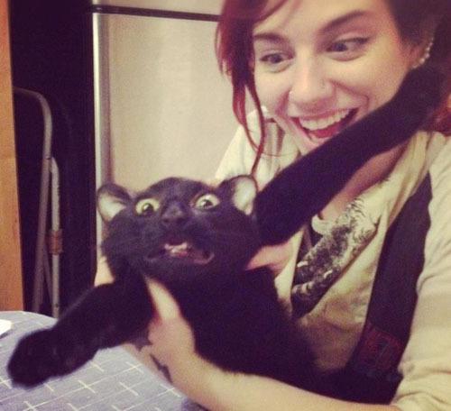 """Котики, которые """"обожают"""" фоткаться"""
