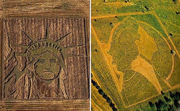 Креативные картины на рисовых полях
