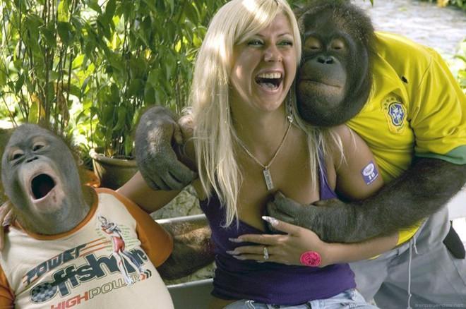 алена хочет секса со обезьян очень видео