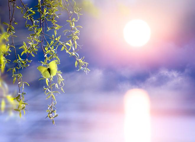 Что можно и нельзя делать в день Кириллов день, кто отмечает День ангела 31 марта