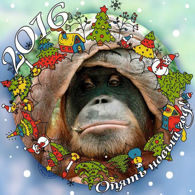 Картинки обезьяны на открытки 139