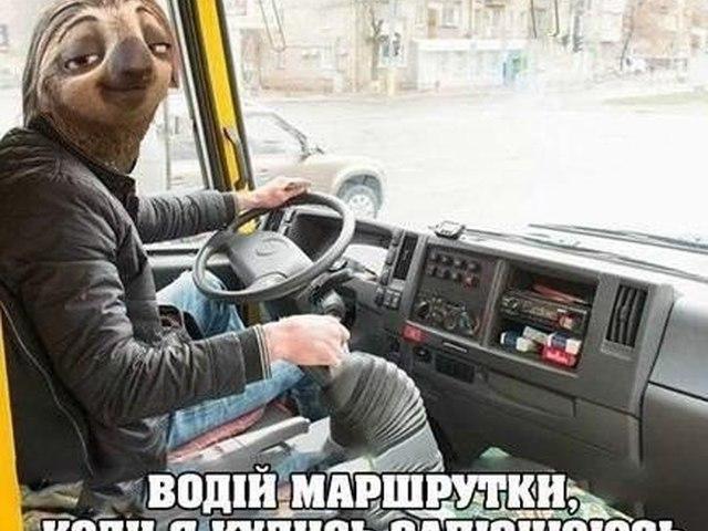 дело смешные картинки про водителей мужчин маршрутчиков необходимости делаем
