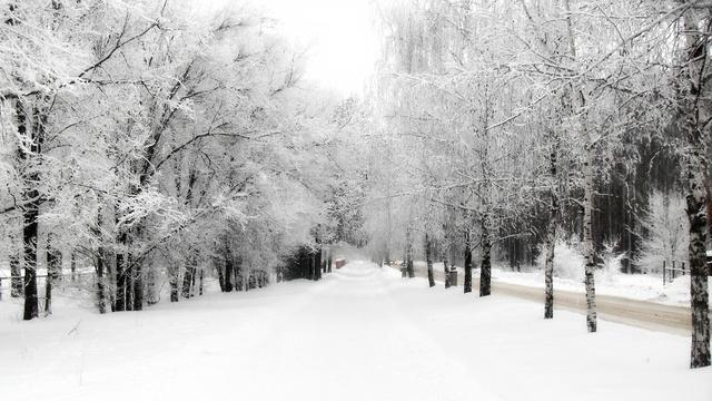 Зимняя атмосфера