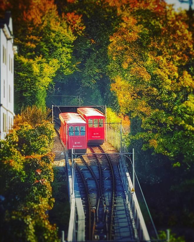 Куда поехать в ноябре: посети осенний Цюрих
