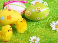 Цыплята и пасхальные яйца