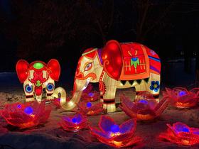 Фестиваль китайських ліхтарів 2019