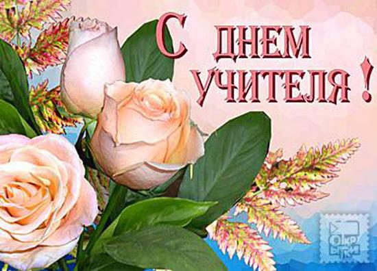 Розы на день учителя